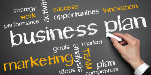 Business Plan & Marketing Strategies